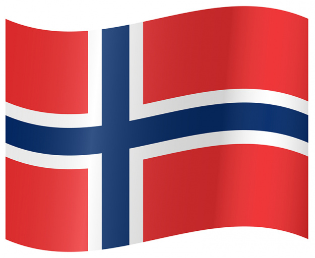 Fly Your Norwegian Colors Flag